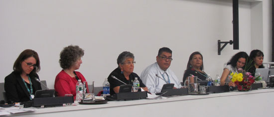UN Permanent Forum on Indigenous Issues (May 25, 2011)